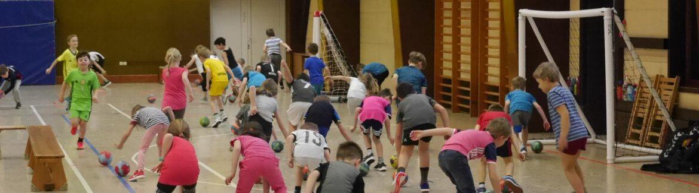 Handball: Dollerner Sport-Club wird vom Deutschen Handballbund mit Schulpreis ausgezeichnet